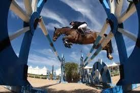 equestrian_4