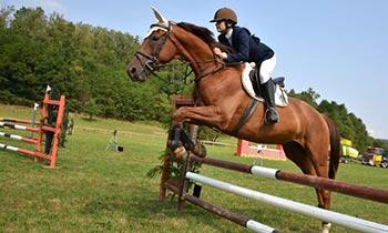 equitazione-1-750x450